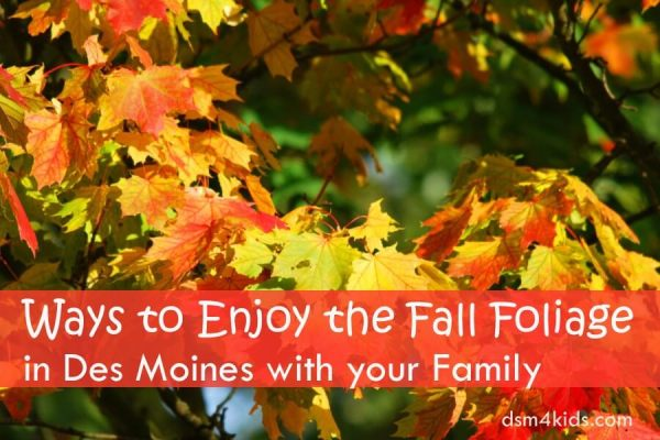 Ways to Enjoy the Fall Foliage in Des Moines with your Family - dsm4kids.com