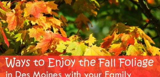 Ways to Enjoy the Fall Foliage in Des Moines with your Family