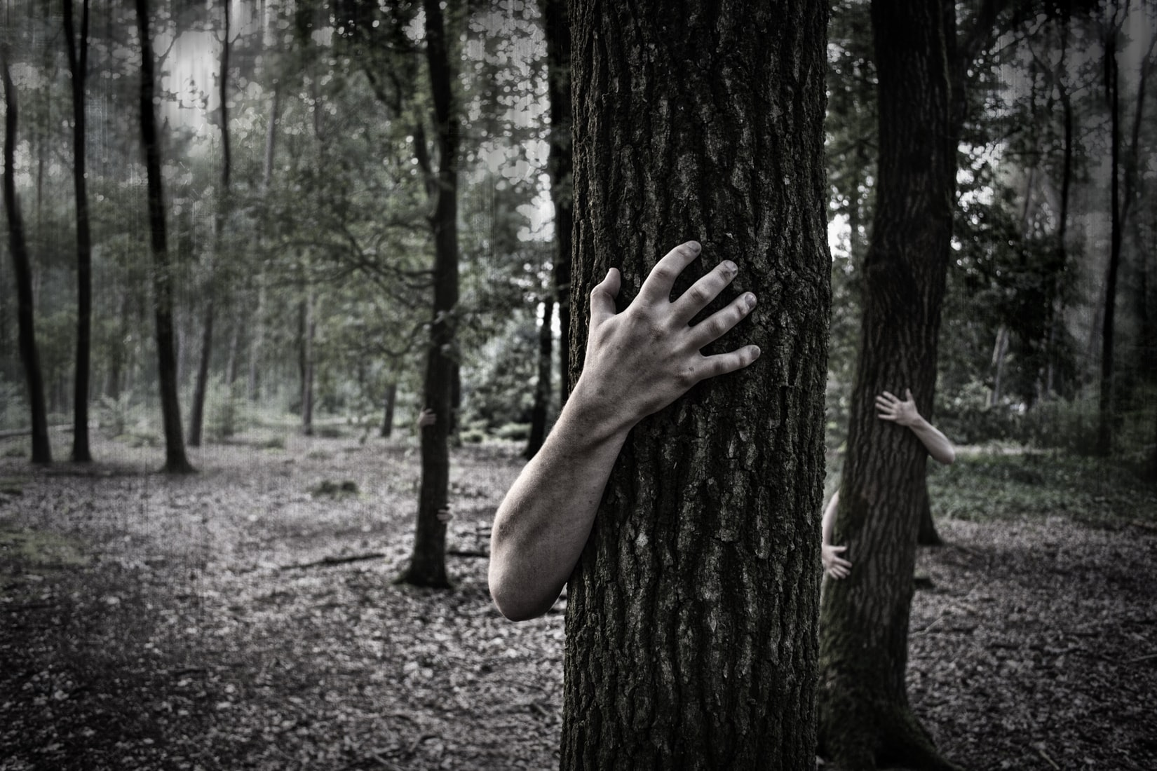 Two persons hugging trees in a dark forest
