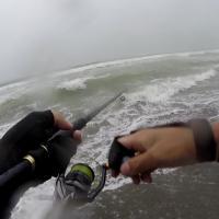 サーフフラットフィッシュ海の濁りは釣果に影響