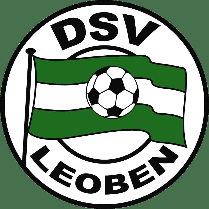 DSV Logo 2 2