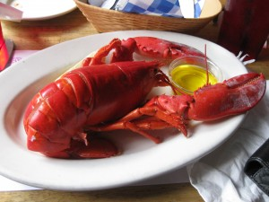 Steamed lobster Boston sports travel