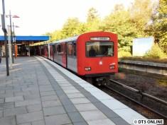 Der Verband 780/768/771/782 steht an der Sengelmannstraße, hinten wird weiterhin U3 Farmsen geschildert.