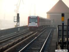 Der Nebel bleibt erhalten, wenn auch schwächer. DT3 868/924 erreicht den Baumwall