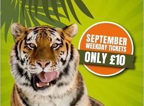 blair drummond safari park September Weekend Glasgow
