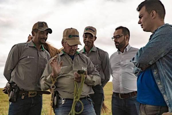 Transformação digital na agropecuária