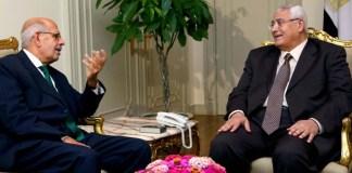 El-Baradei macht's doch nicht