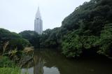 【聖地巡礼】Forest 聖地巡礼マップ