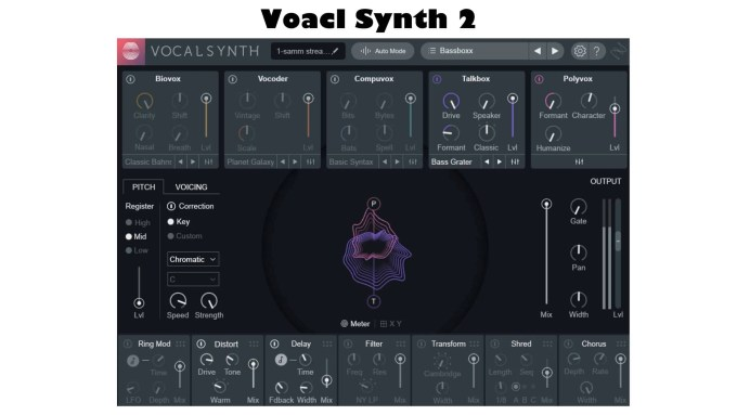 DTM 初心者 Vocal Synth music production suite 2 izotope
