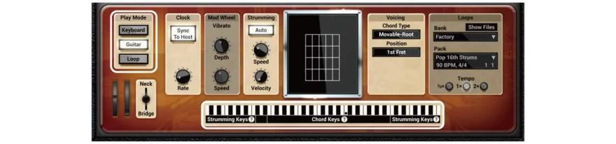 strum-gs-2-aas-guitar