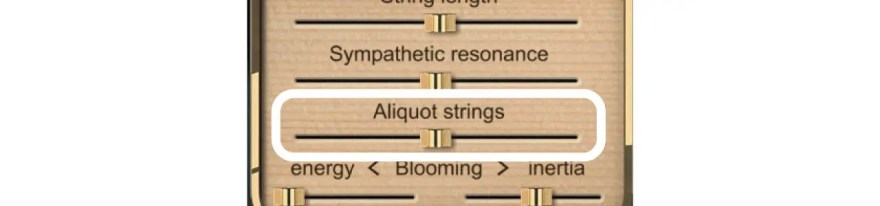 aliquot-strings-bluethner