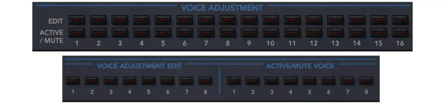 voice-adjustment-obsession