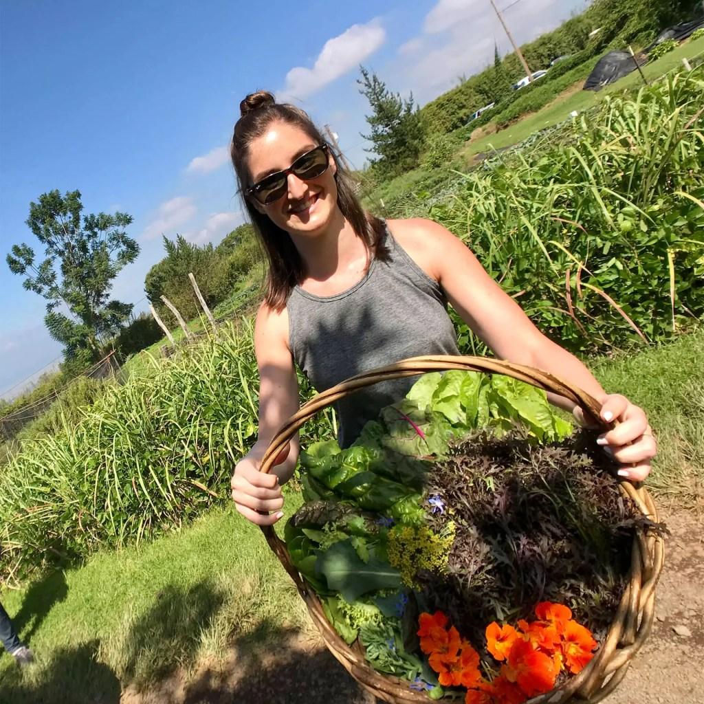 Maui OO Farm Basket