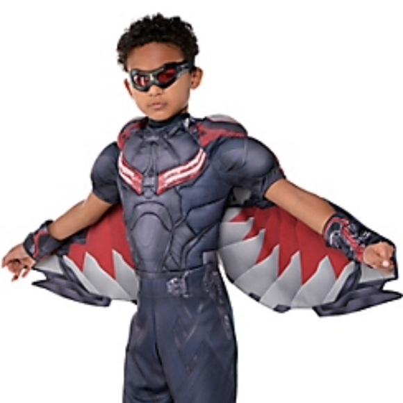 Falcon Costumes Boys