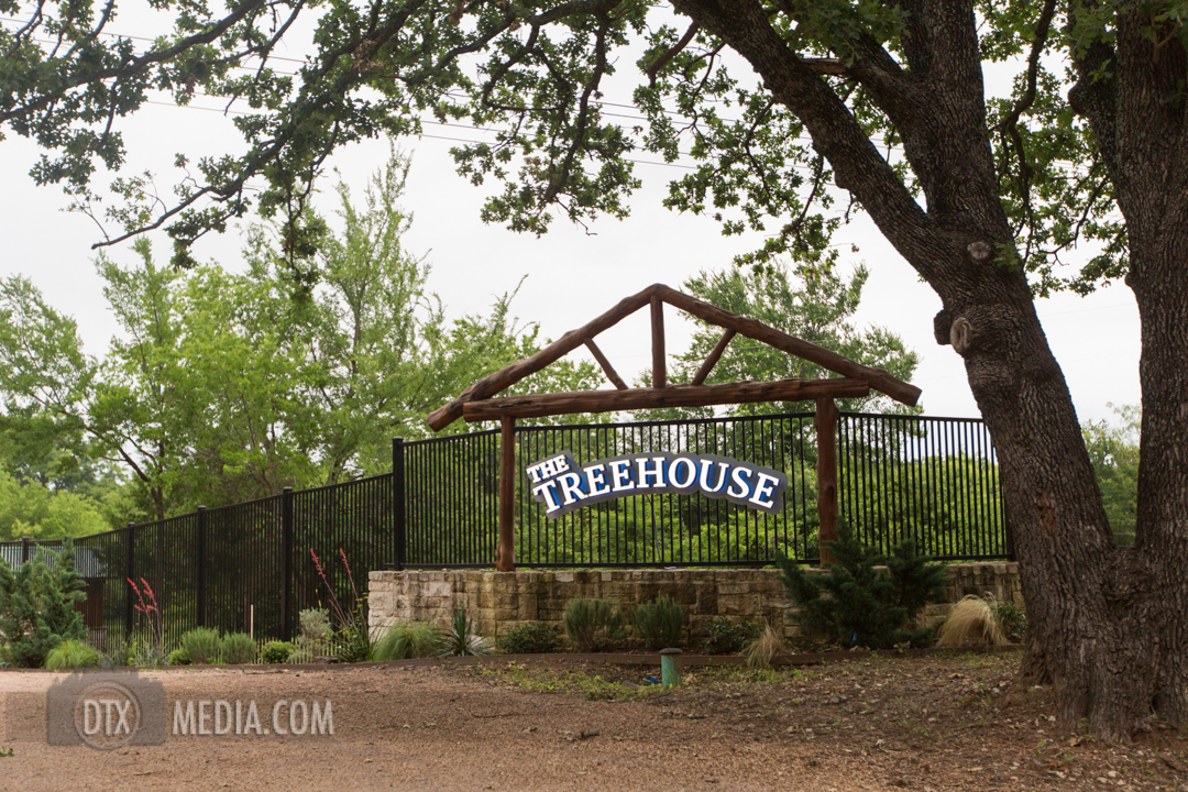 treehouse dtx