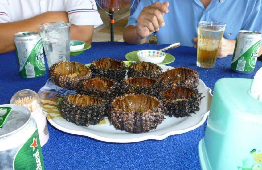 Bạn đừng quên thưởng thức món nhum nướng ở Phú Quốc