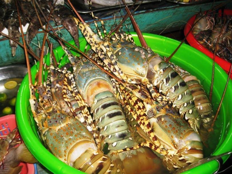 Quán ăn hải sản ở Phú Quốc ngon và rẻ