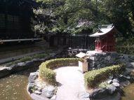 Tokyo Shrine in the Sun