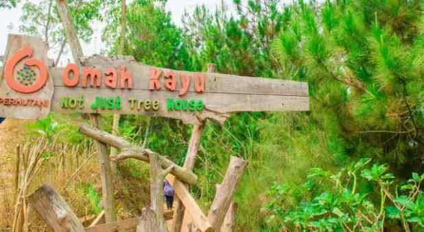 Sejuknya Wisata Rumah Pohon Omah Kayu Di Batu Malang