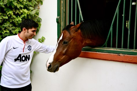 Me petting the horse