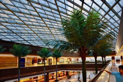 Dusit Thani Abu Dhabi glass cieling