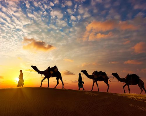 Evening Desert Safari rides and tours, things to do in dubai, evening safari