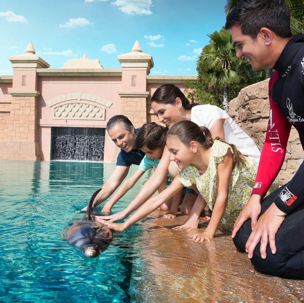 selfie a delfinnel Dubai-ban