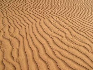 Sivatagi homokdűne