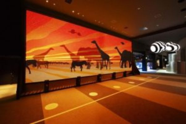 Animalpedia Orbi Dubai
