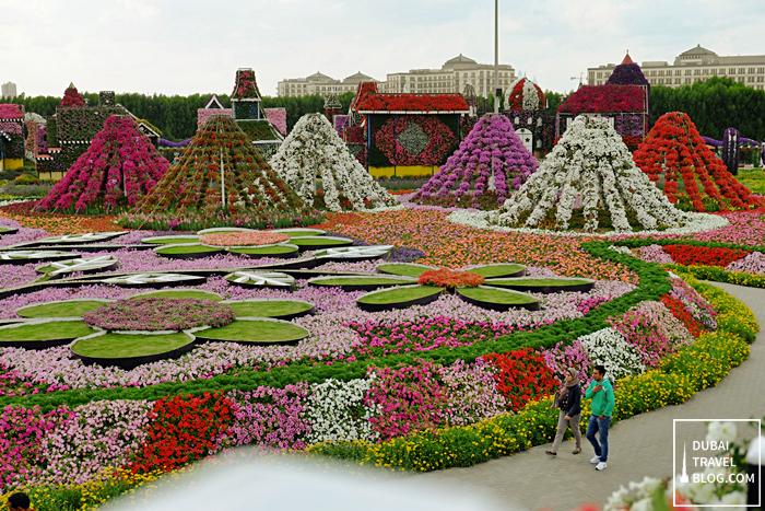 dubai miracle garden display