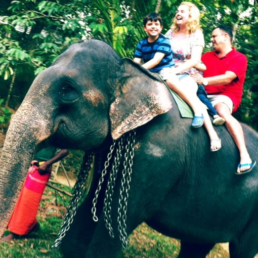 Jungle taxi: We didn't have time to do the quintessential activities like whale-watching off the coast or leopard-spotting in a national park, but I'll never forget this elephant ride