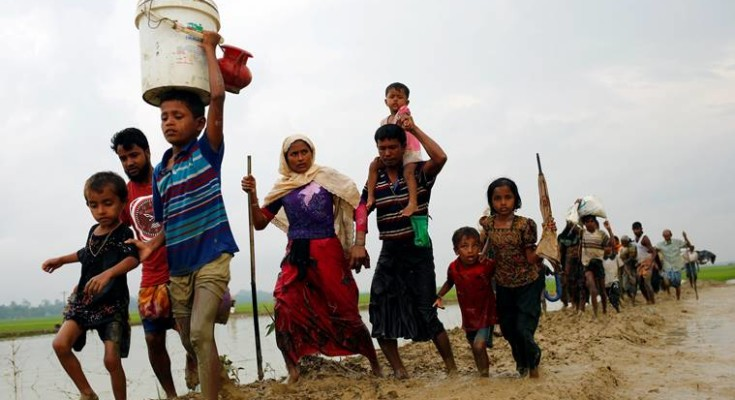 Image result for the rohingya crisis