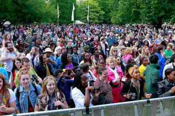Africa Day 2015 crowd