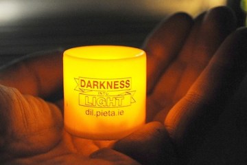 Darkness Into Light 2017