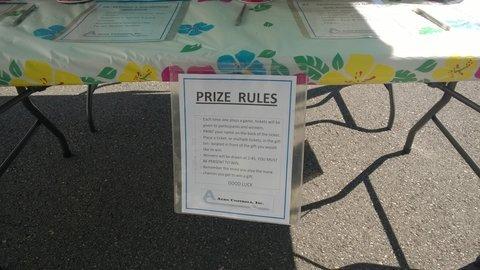 company picnic activities ideas