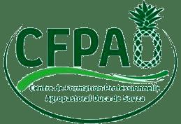 LE CENTRE DUCA DE SOUZA A RECU L'AGREMENT DU MINISTERE DE LA FORMATION PROFESSIONNELLE ET DEVIENT LE CFPAD