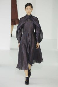 delpozo-fall-winter-2017-new-york-womenswear-catwalks-017