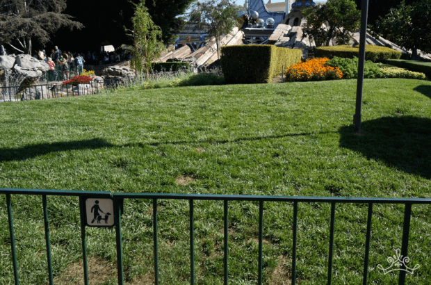 Service Animal Relief Areas