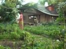 W wiosennym ogródku