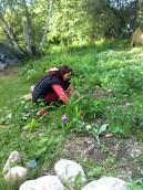 Naturalnie w ogródku ;)