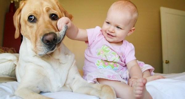 Самые милые и добрые фотографии детей с животными