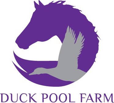 Duck Pool Farm