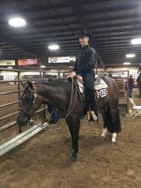 'Gina' My Wild Invitation ridden by Kenny Lakins at the Gordyville show.