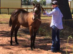 Louise Blake spending time with her boy Will (Winnie's Willy x Sheza Little Lazy). Her smile says it all.