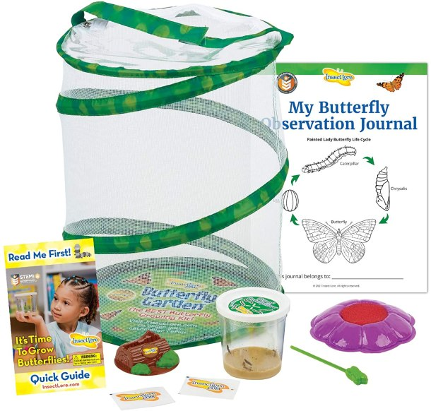 Insect lore butterfly garden science kit #ad