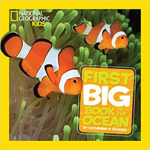 Nat Geo Kids first book of the ocean #ad