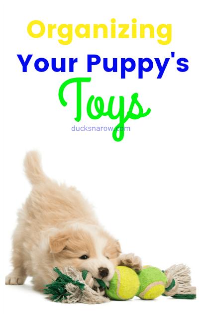 pet supplies, pet toys, dog toys, puppies, puppy toys, storage