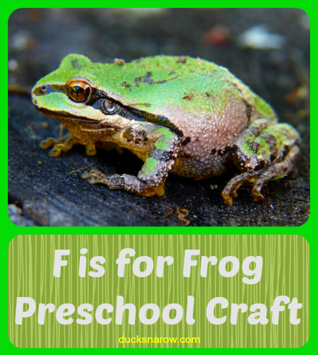 f is for frog preschool craft ducks n a row