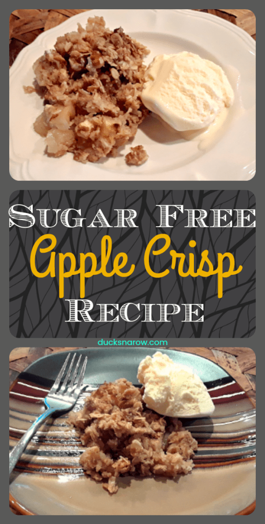Delicious sugar free classic apple crisp recipe
