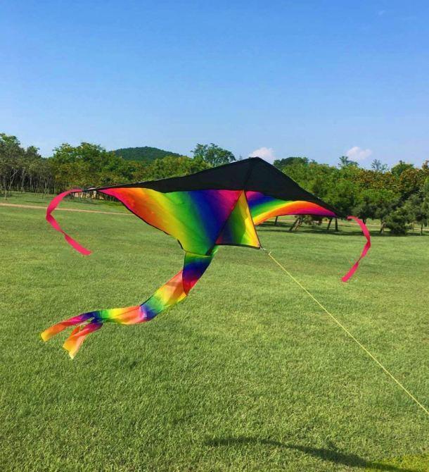 Pretty rainbow colored kite #toys #ad